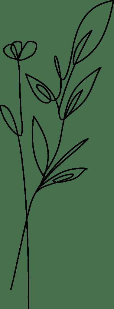 Chiltern Publishing Limited - flower HNZL36